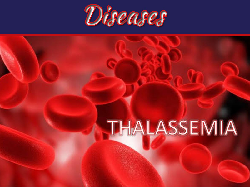 9 Factors Are Responsible For Thalassemia