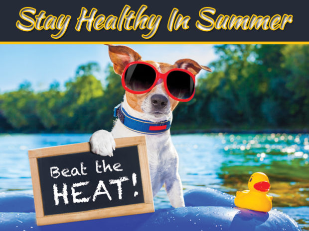 How To Stay Healthy In Summer – All Essentials You Should Know About
