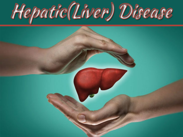9 Treatments And Therapies Of Hepatic Disease