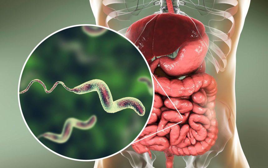 Diarrheal Disease