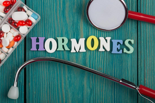 Food To Keep Hormones Happy