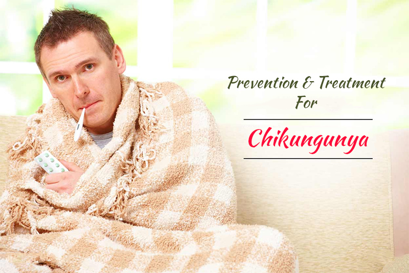 Chikungunya Treatment