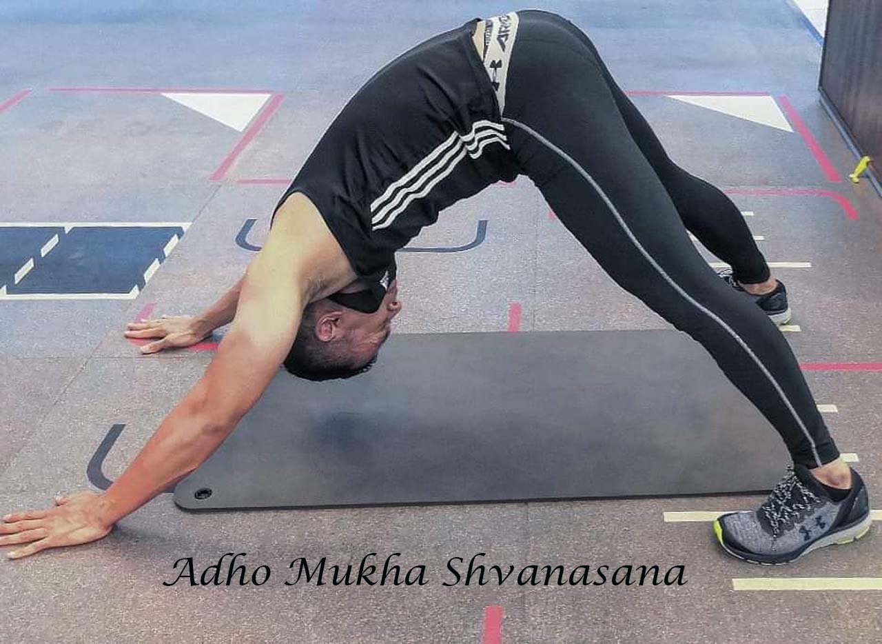 Adho Mukha Shvanasana