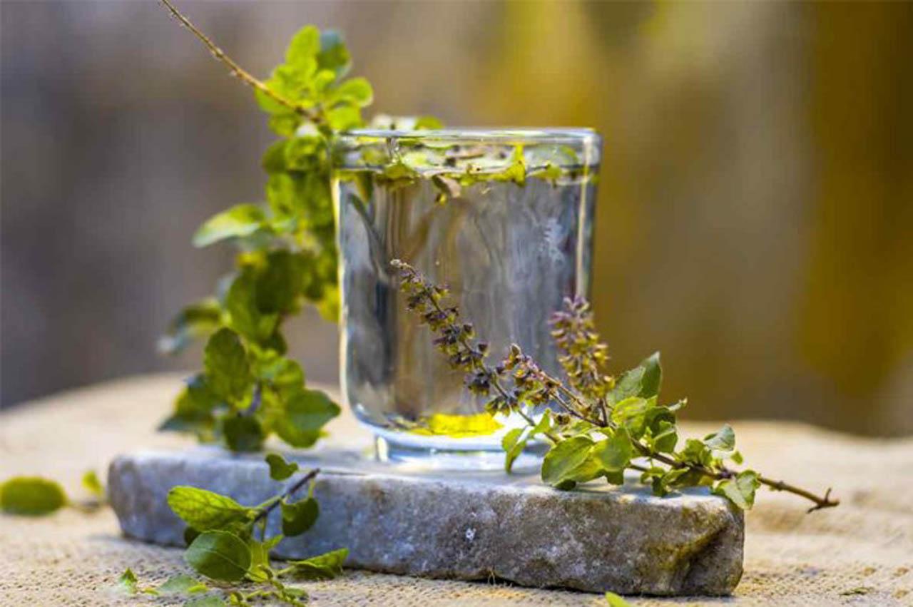 Tulsi Water