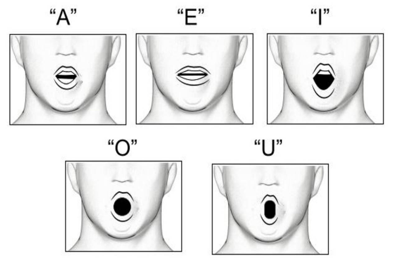Vowel Exercise