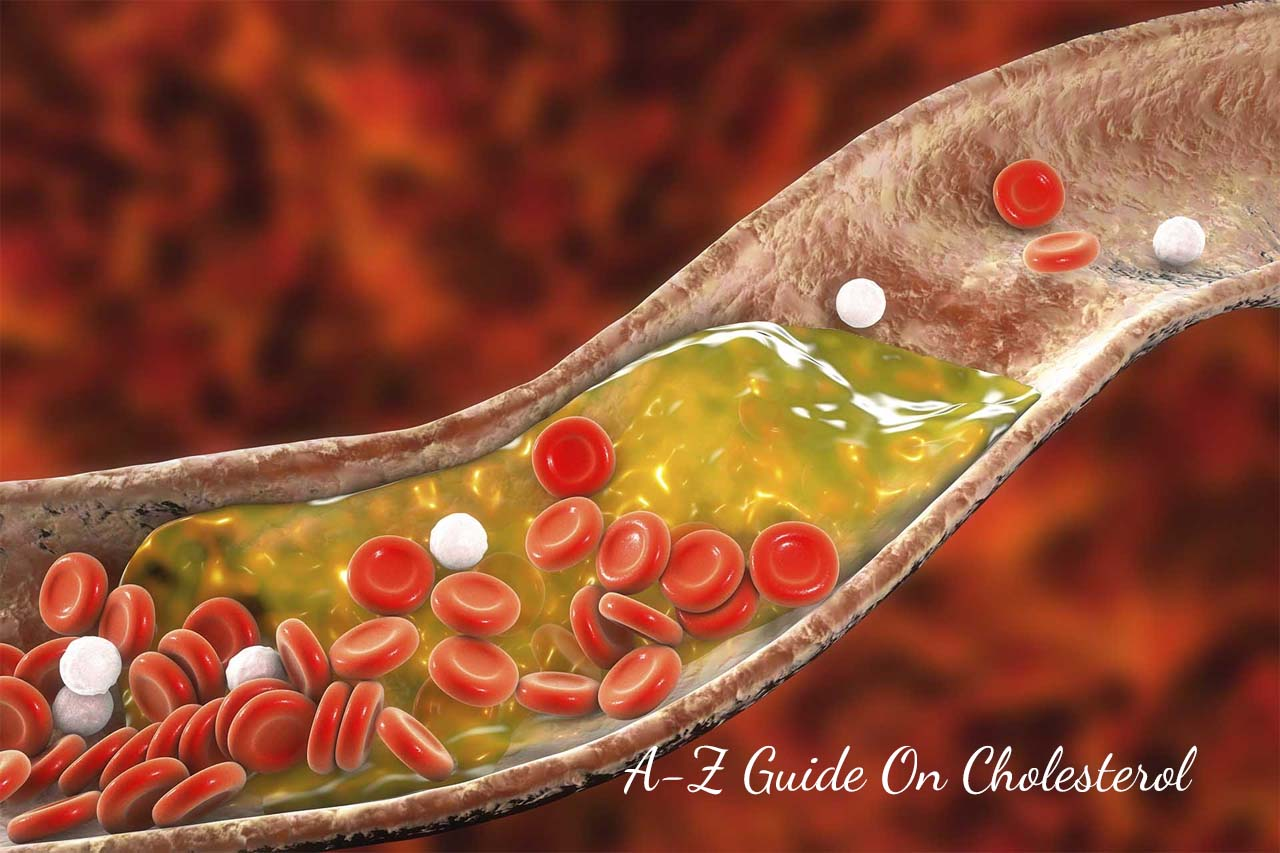 Your A-Z Guide On Cholesterol